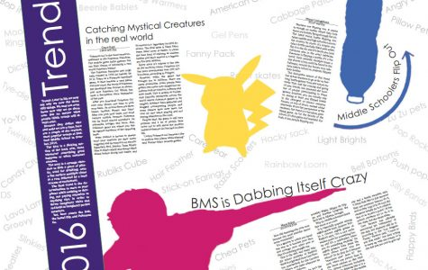 2016 BMS Trends