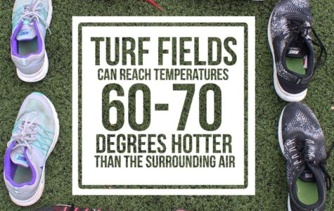 Is Turf Making Us Sick?