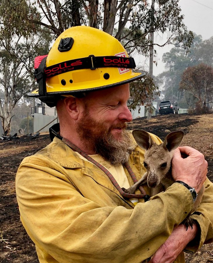 Captain+Soldavini+with+baby+kangaroo+in+January.+The+fires+have+destroyed+homes%2C+and+they+have+killed+people+and+wildlife.