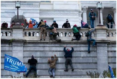 Protesters climb up in order to try to illegally enter the capitol building.